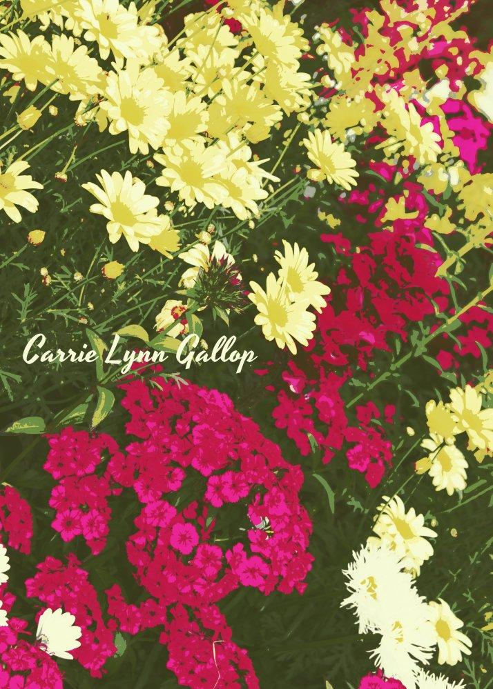 My photography - Flower art