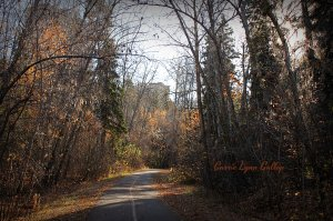 Fall trail - vingette w sign