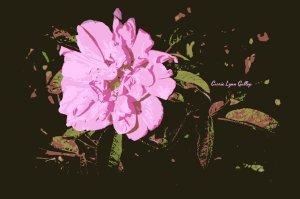 Shriveled Pink - Poster Art w sign