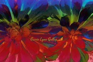 Succulent - crazy color poster art w sign